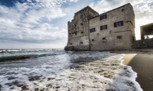 TRUFE SI VINURI IN TOSCANA - ITALIA