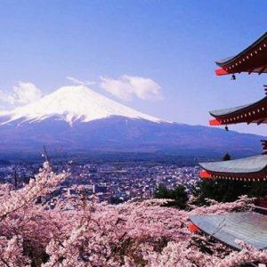 Croaziera de grup cu zbor inclus Japonia