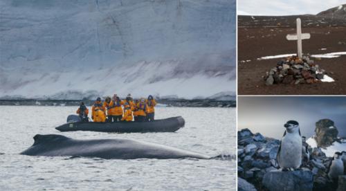 Croaziera polara de lux – Omagiu pentru SHACKLETON